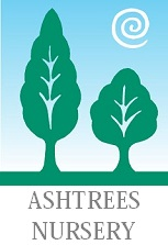 Ashtrees Nursery